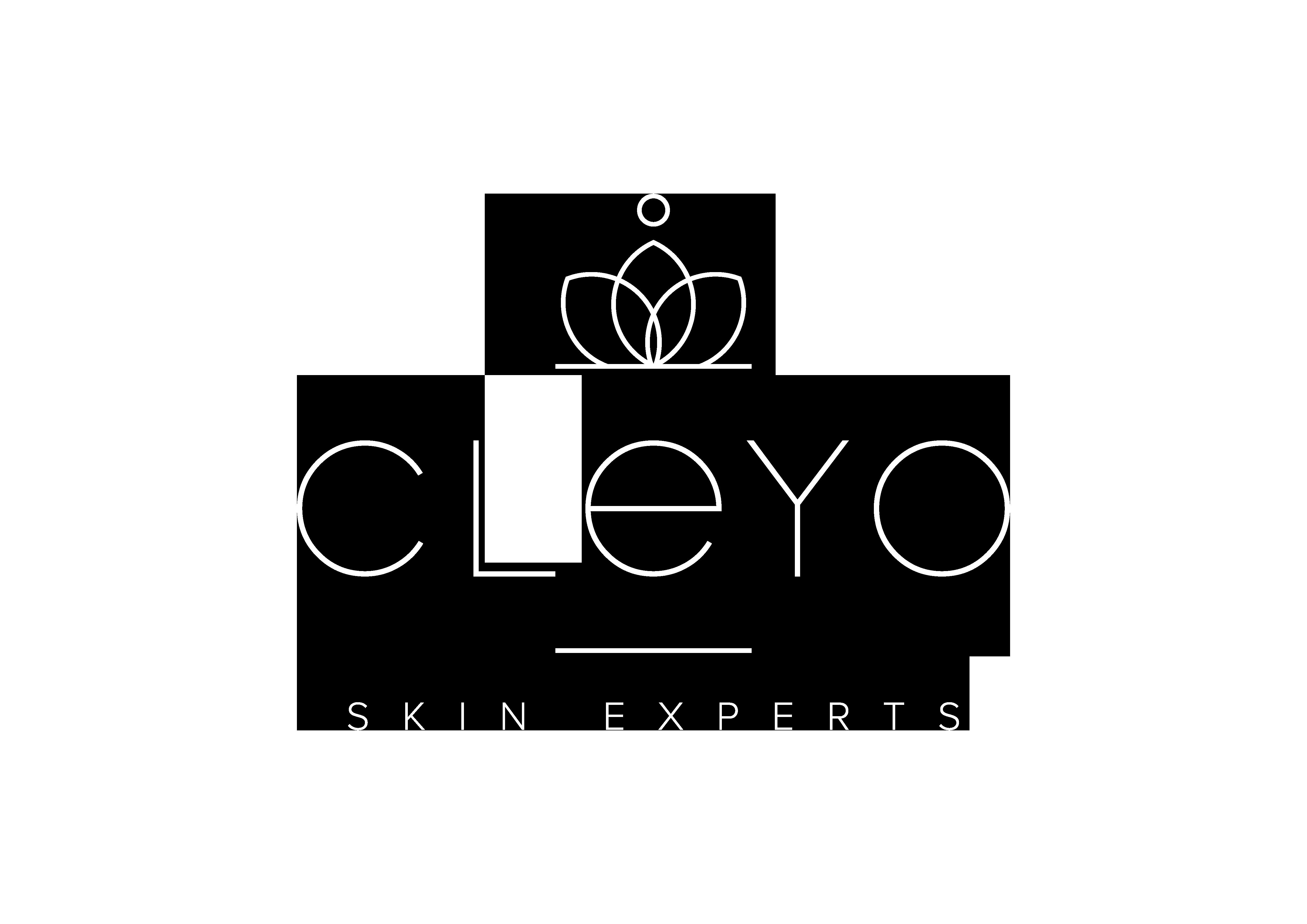 logo cleyo